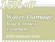 Cleaning Coupons | 15% off mold & mildew removal | CITICLEAN